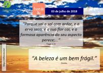 03-07-2018